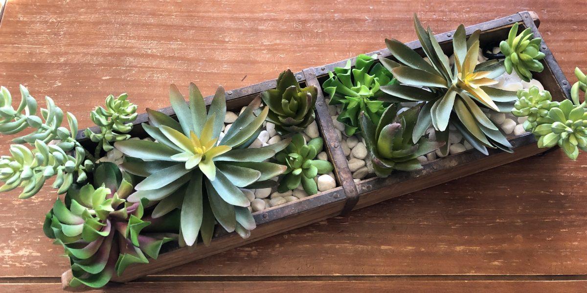 Succulent brick mold